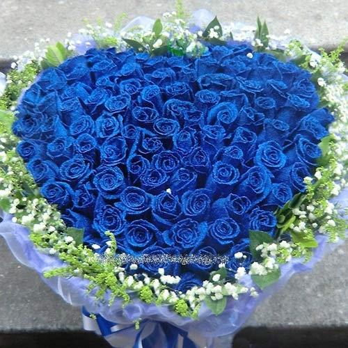 giai ma bi an ve tinh yeu vinh cuu trong y nghia hoa hong xanh duong