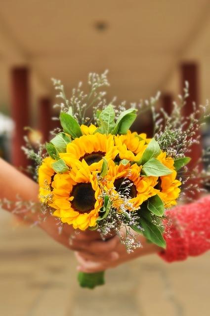 bo hoa huong duong nho cam tay   mon qua tang day y nghia