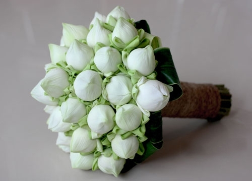 dieu dac biet tao nen suc hut tu hoa cuoi hoa sen trang hong la gi