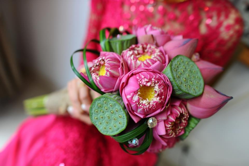 shop hoa sen huong dan meo trang tri ngoi nha bang hoa sen cuc dep