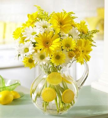 y nghia hoa da quy nhung dieu nen biet