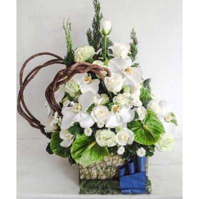 lang hoa tuoi dep gia ca phai chang o ha noi