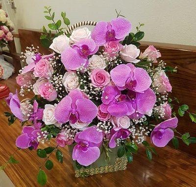 lang hoa chuc mung sinh nhat sep