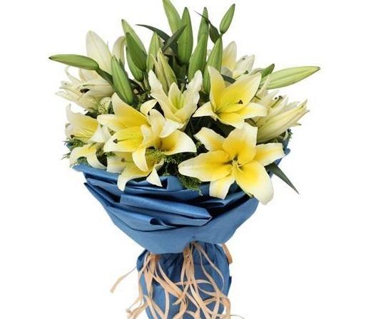 y nghia hoa ly qua tung mau sac