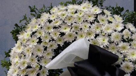 y nghia bat ngo cua hoa cuc trang trong vong hoa tang le