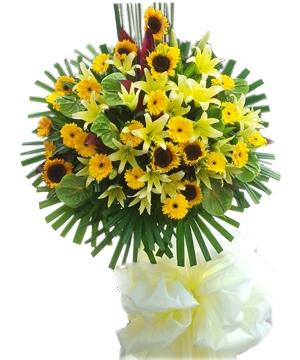 hoa sinh nhat thang 11 nen tang hoa gi