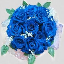 goi y hoa sinh nhat tang ban trai y nghia