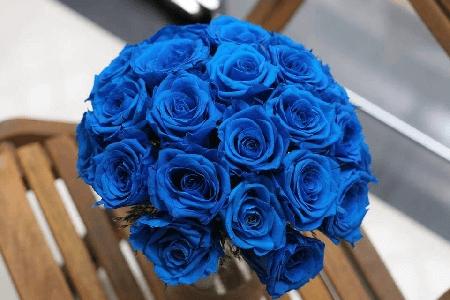 y nghia cua hoa hong xanh trong tinh yeu
