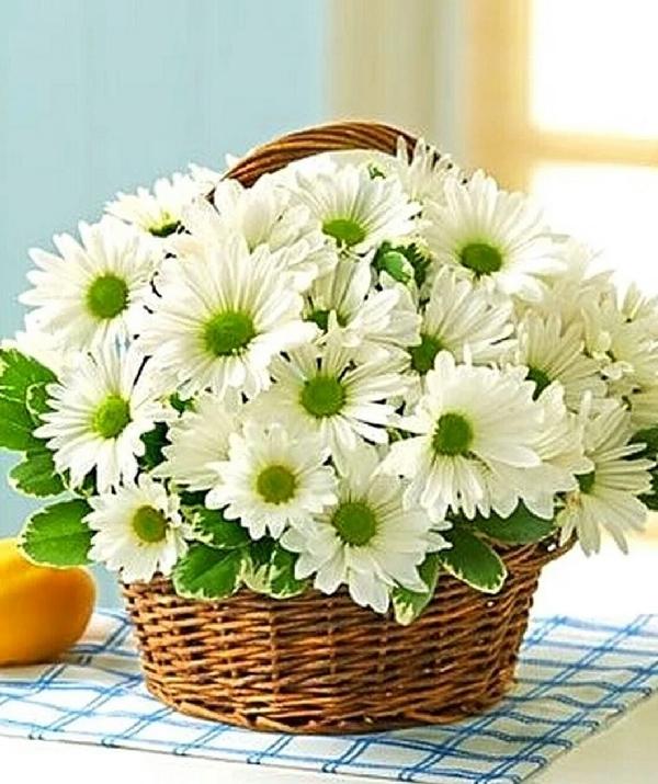 kinh nghiem chon hoa qua sinh nhat tang me y nghia nhat