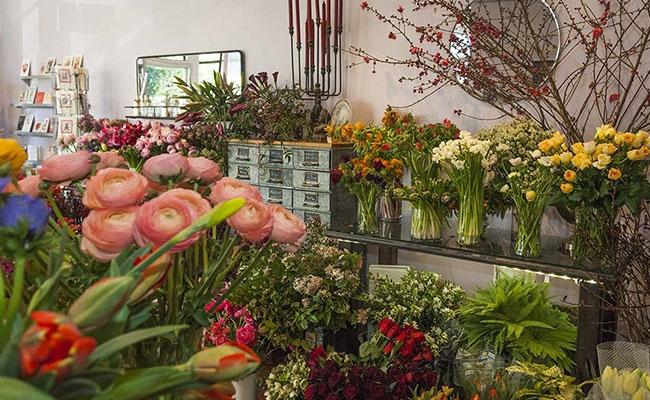 mua hoa tot nghiep da nang o dau vua re vua dep